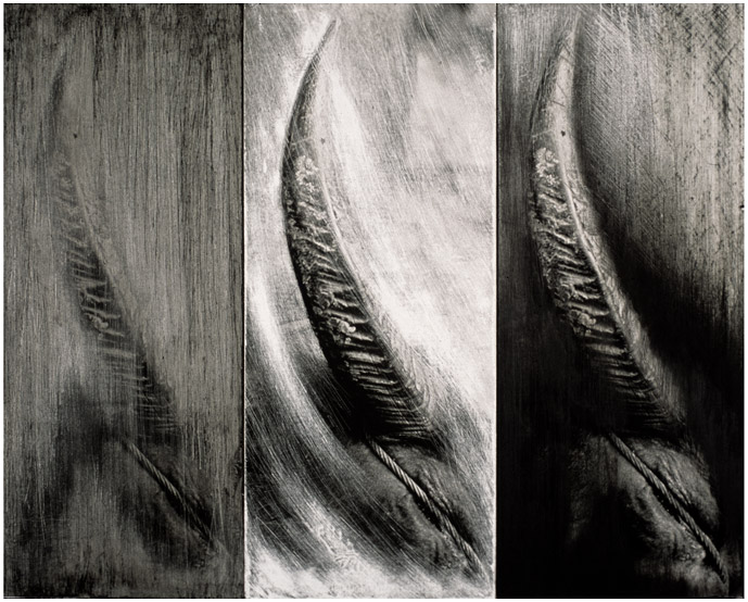Triptych Horn and Rope